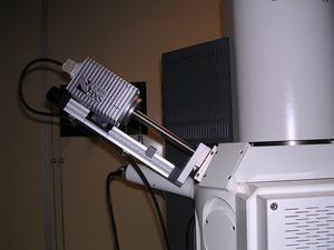Système EDS Xflash 4010 Bruker