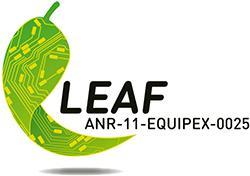 logo_leaf_equipex